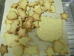 完成品クッキー