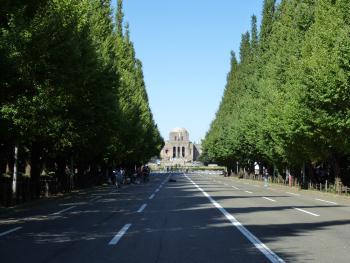 神宮外苑・イチョウ並木
