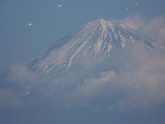 三保の松原から見る富士山(拡大)