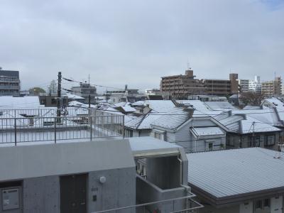 雪が積もった!