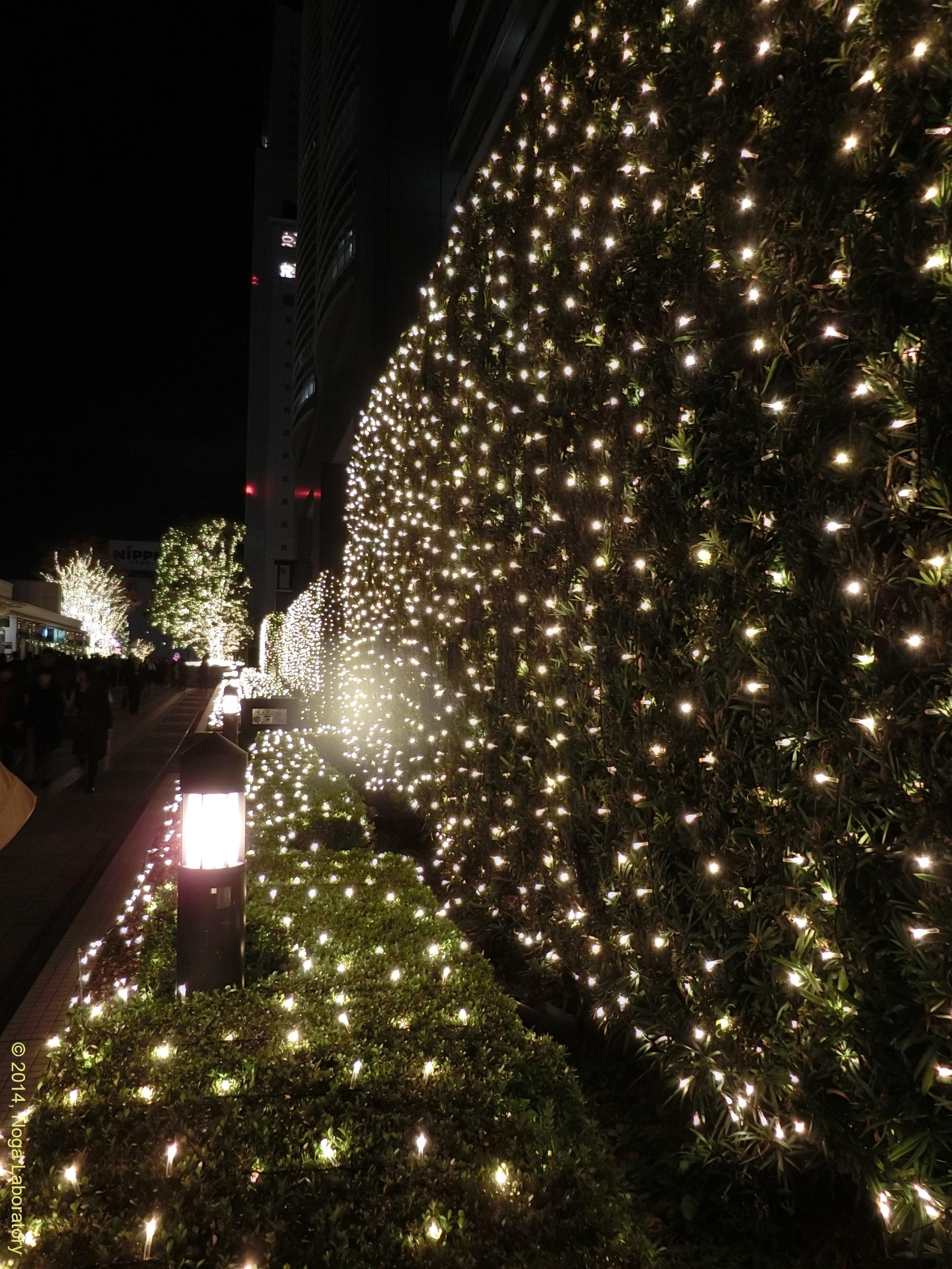 新宿テラスシティ・イルミネーション2014-2015・その6