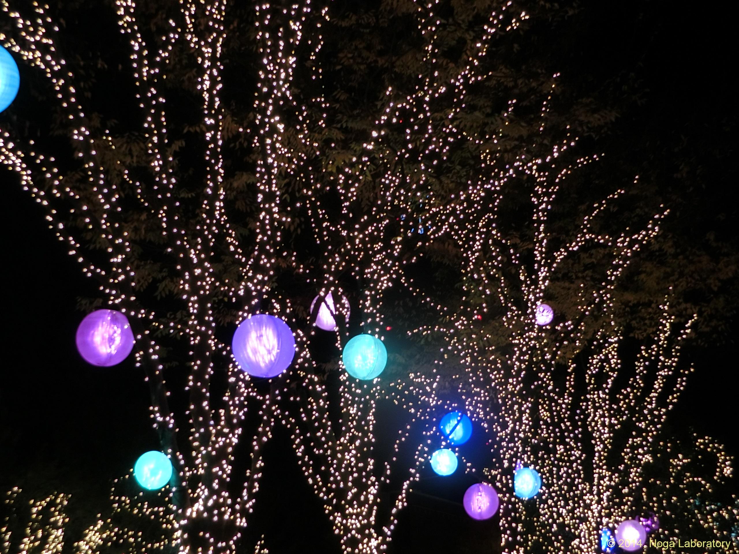 新宿テラスシティ・イルミネーション2014-2015・その7
