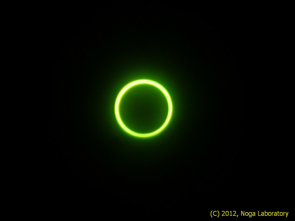完璧な金環日食です