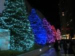 新宿テラスシティ・イルミネーション2014-2015・その5